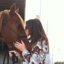 amy kissing horse